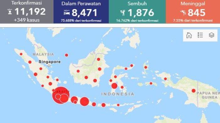Daftar Sebaran Virus Corona di Indonesia, Minggu (3/5/2020): Angka Kesembuhan Mencapai 1.876 Pasien