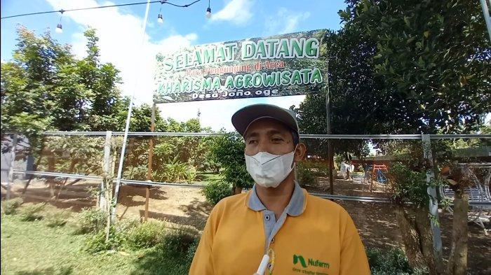 Kawasan Agrowisata di Desa Jono Oge Sigi, Hanya 12 Kilometer dari Pusat Kota Palu