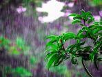 ilustrasi-hujan5678.jpg