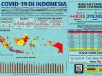 infografik-data-covid-19-di-indonesia-per-11-november-2020.jpg