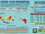 infografik-data-covid-19-di-indonesia-selasa-2992020.jpg