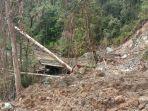 kondisi-hutan-setelah-adanya-antivitas-pt-dahatama-adhy.jpg