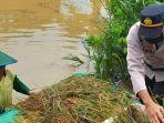 polisi-membantu-petani-menyelamatkan-hasil-panen-yang-terendam-banjir.jpg
