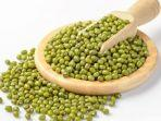 suka-konsumsi-bubur-kacang-hijau-berikut-ini-5-manfaat-bagi-kesehatan-tubuh.jpg