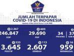 update-akumulasi-jumlah-kasus-virus-corona-di-indonesia-sabtu-952020.jpg