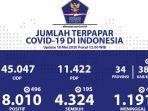 update-akumulasi-jumlah-kasus-virus-corona-di-indonesia-senin-1852020.jpg