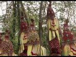 video-enam-penari-iyongdong-art-group-dinilai-lecehkan-aksesoris-budaya-toraja.jpg