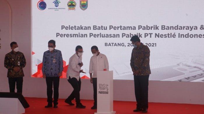 Pemkab Batang Bakal Tambah 9 Ribu Hektare Lahan Jagung Dukung Pabrik Nestle