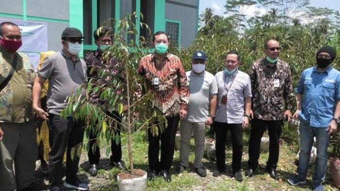 Ribuan Bibit Durian Bawor Dibagikan Kepada Warga Tiga Desa di Banyumas