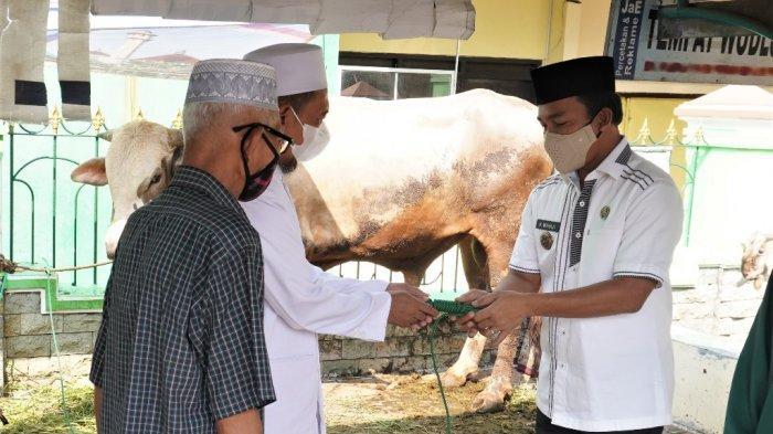 Bupati Wihaji Serahkan Seekor Sapi dan Kambing untuk Kurban di Masjid Agung Darul Muttaqin Batang