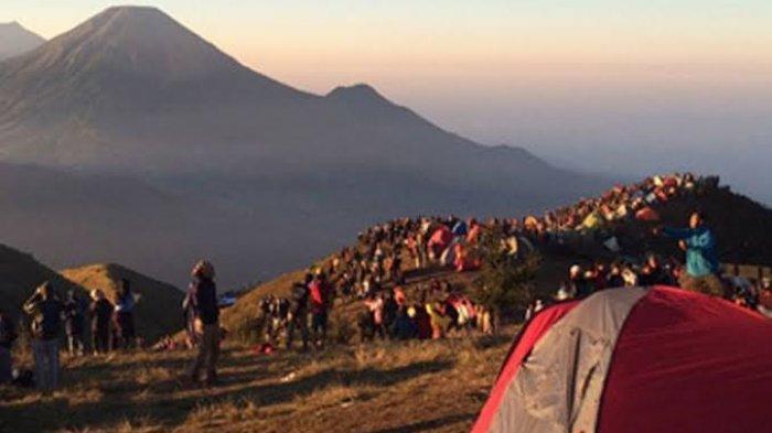 Jalur Pendakian Gunung Prau Via Wonosobo Ditutup Karena Covid-19, Banjarnegara Tetap Buka