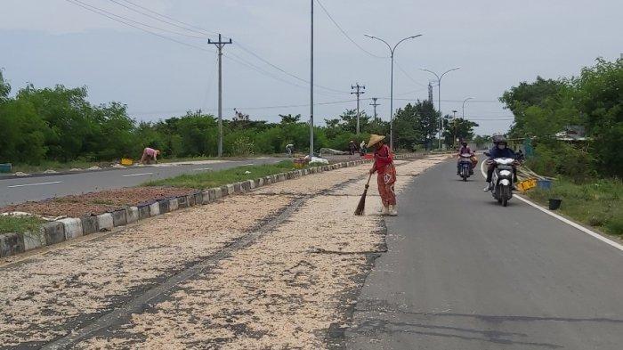 Masyarakat nelayan di pesisir Kota Tegal menjemur rebon di Jalan Lingkar Utara (Jalingkut) penghubung Tegal - Brebes yang belum diresmikan, Kamis (4/3/2021).