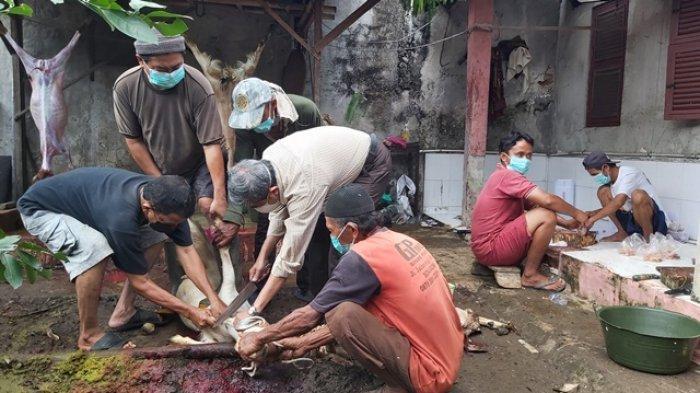 Para Dokter di Kota Tegal Patungan Sumbang 36 Ekor Kambing Kurban