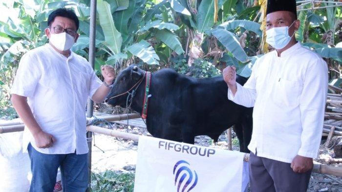FIF Group Sebar 373 Kambing dan Tiga Sapi Kurban di 235 Titik Seluruh Cabang Indonesia