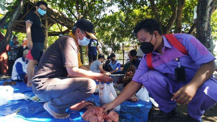 Temukan Cacing Hati pada 6 Ekor Sapi Kurban, Ini yang Dilakukan Petugas DPP Kendal