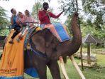 naik-gajah-objek-wisata-linggoasri-pekalongan.jpg