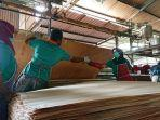 plywood-batang.jpg