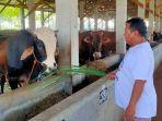 salah-satu-peternak-sapi-di-kabupaten-batang.jpg
