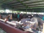 uasana-pasar-hewan-ternak-gulang-selasa-1372021.jpg