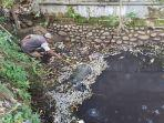 warga-sedang-membersihkan-ikan-ikan-yang-mati-diduga-akibat-aliran-sungai-terse.jpg