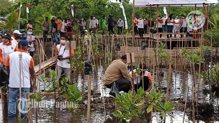 Sangat Strategis, BRGM Minta Masyarakat Jaga Hutan Mangrove di Sorong