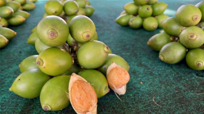 Memasuki Agustus, Harga Buah Pinang di Pasar Youtefa Jayapura Meroket