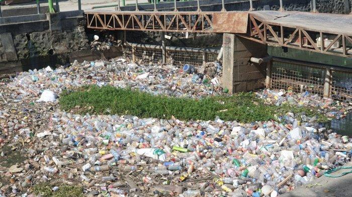 Mengenang Banjir di Kota Jayapura Akibat Sampah Plastik dan Botol di Kali Acai