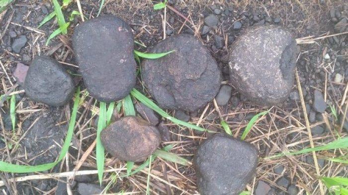 Balai Arkeologi Papua Temukan Artefak Batu Berbentuk Pipih di Kampung Abar