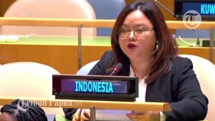 Dituding Langgar HAM Papua di Sidang PBB, Diplomat Indonesia Bungkam Vanuatu
