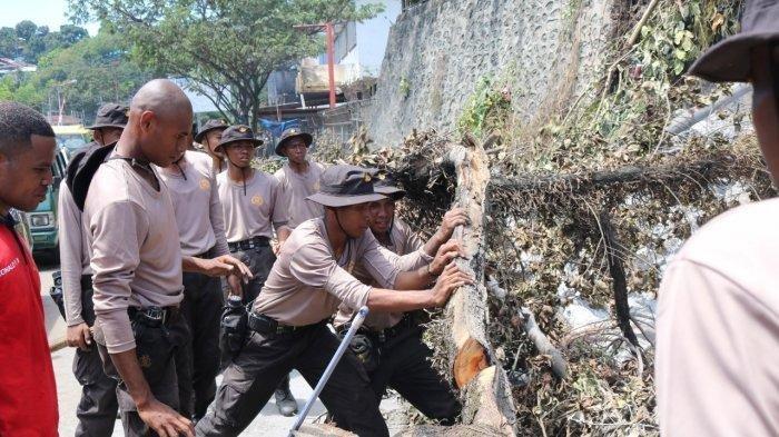 TERKINI Rusuh Jayapura: Ratusan Calon Polisi Bersihkan Puing Sisa Kerusuhan, Aktivitas Sudah Normal