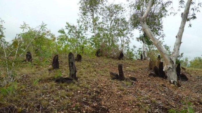 Bebatuan di Situs Megalitik Tutari di Kampung Doyo Lama, Distrik Waibu, Kabupaten Jayapura