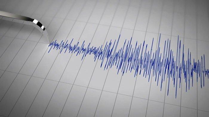 Gempa Bumi Magnitudo 4,2 Guncang Jayapura, BMKG: Tidak Berpotensi Tsunami