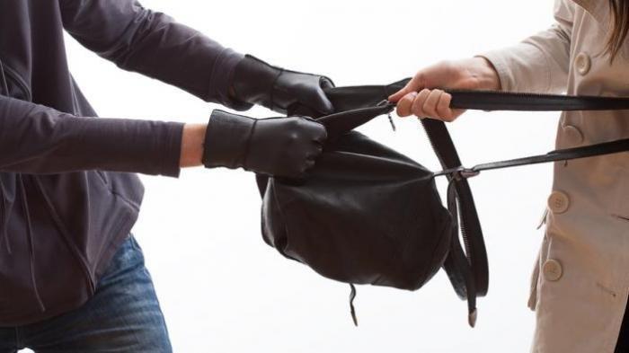 Viral Video Wanita Nekat Lompat dan Menubruk Pencuri di Atas Motor, Pelaku sempat Pura-pura Belanja