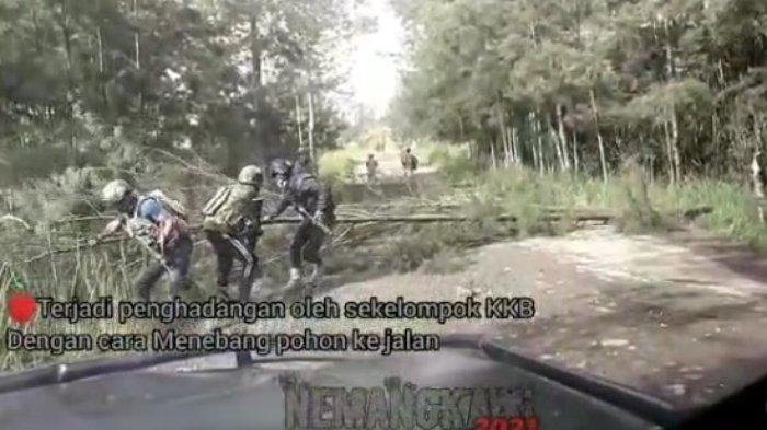 Video KKB Papua Lari Kocar-kacir ke Hutan Dikejar TNI-Polri, Tebang Pohon hingga Sembunyi di Honai