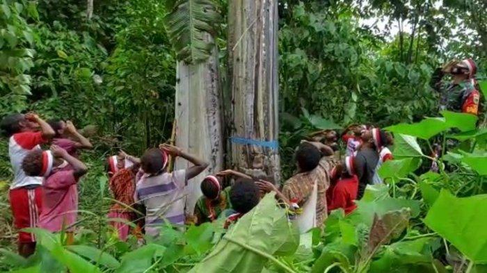 Warga Distrik Warmare Upacara di Hutan Belantara, Kibarkan Bendera di Pohon Pisang Setinggi 25 Meter