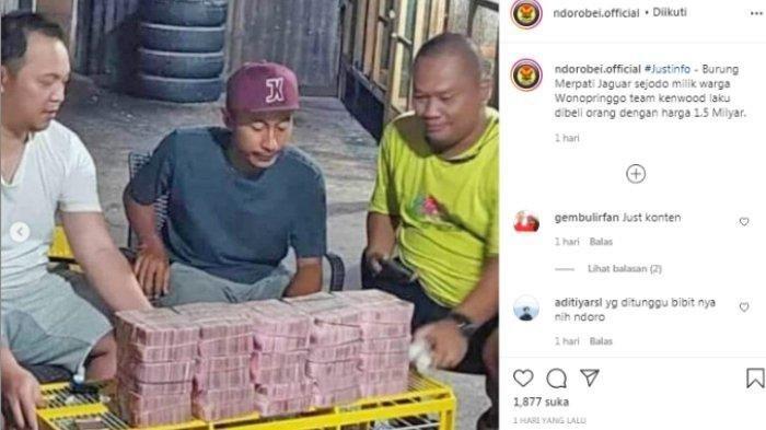 Muhammad Joned, warga Desa/Kecamatan Wonopringgo, Kabupaten Pekalongan, Jawa Tengah, berhasil menjual merpati bernama Jaguar miliknya dengan harga Rp 1,5 miliar.