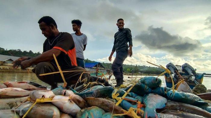 Dukung PON XX Papua, Pemkab Biak akan Kirim Ikan Segar dan Telur Lokal ke Jayapura