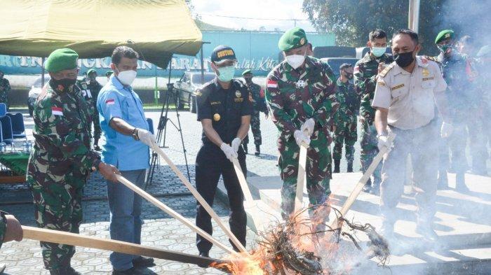 TNI Musnahkan Barang Sitaan Satgas Pamtas RI-PNG, Mulai dari Ganja hingga Ratusan Miras