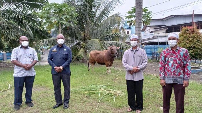 Jelang Idul Adha, Pemprov Papua Barat Serahkan 52 Hewan Kurban