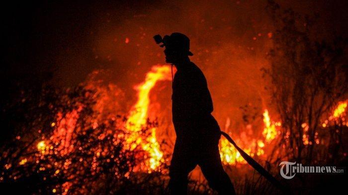 Asap Kebakaran Australia Disebut NASA akan Menyebar ke Penjuru Dunia dan Memicu Badai Petir Api