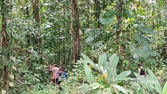 Viral Video Detik-detik Pos TNI di Papua Diserang, KKB Gunakkan Warga Sipil sebagai Tameng Hidup
