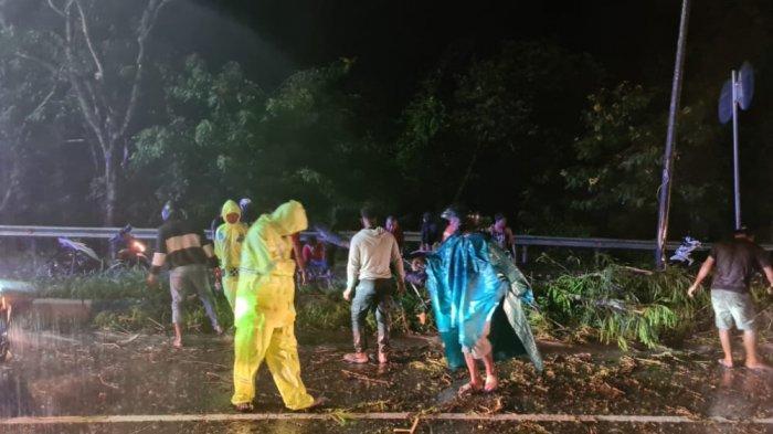 Hujan Deras Sebabkan Pohon Tumbang di Kompleks Kantor Bupati Jayapura, Kantor Satlantas Tergenang