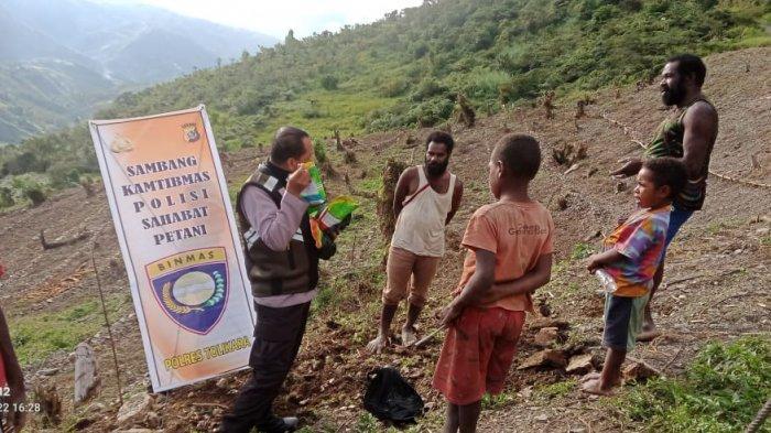 Kembangkan Sektor Pertanian, Polres Tolikara Beri Bantuan Bibit Tanaman untuk Kelompok Tani