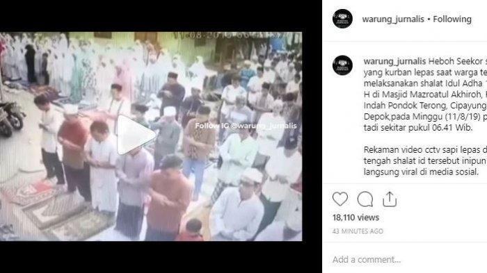 Video Sapi Kurban Lepas dan Buat Jemaah Salat Idul Adha Berlarian, Satu Orang Ini Tetap Khusyuk