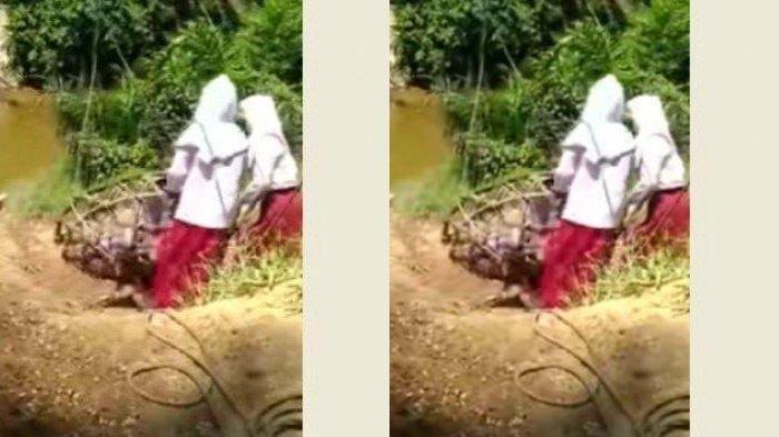 Viral Video 3 Bocah SD Gelantungan Seberangi Sungai, Kades: Ada Jalan yang Layak, tapi Jauh