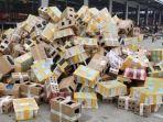5000-hewan-peliharaan-ditemukan-mati-dalam-kardus-di-china.jpg