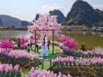 dataran-di-provinsi-guangdong-china-yang-disulap-menjadi-pulau-cinta.jpg