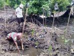 masyarakat-bergotongroyong-menanam-mangrove-di-kelurahan-klamana.jpg