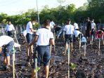 penanaman-pohon-mangrove.jpg