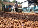 petani-cengkeh-di-kecamatan-wanayasa-tengah-mengeringkan-cengkeh.jpg